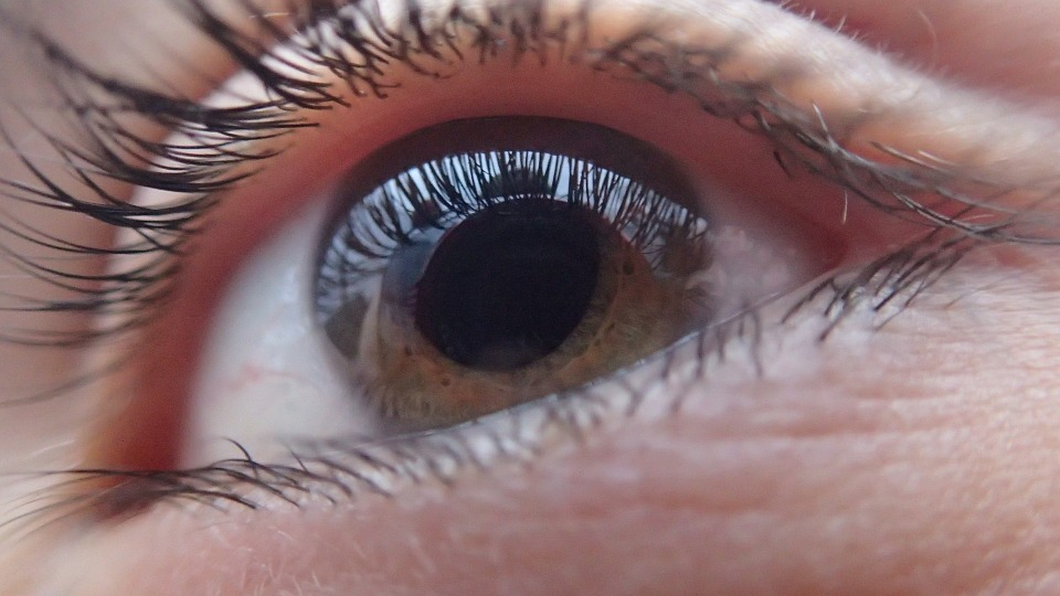 Polskie firmy pracują nad grą uczącą niewidomych echolokacji